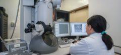 Biotechnologie : Pourquoi la biotechnologie peut-elle être une carrière lucrative ?