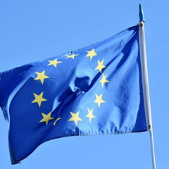 Faire un stage dans une institution européenne : pour un meilleur élan professionnel