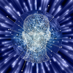 Quelles sont les différentes formations aux métiers de l'IA?