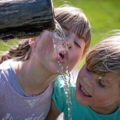 Les précautions à prendre pour maintenir la qualité de l'eau dans lesécoles.